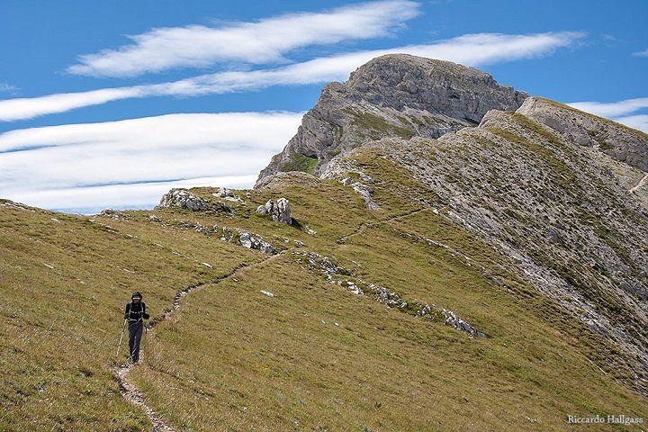 Trekking sul panorama della conca aquilana: il Monte Cefalone  Domenica 30 luglio – FOTO