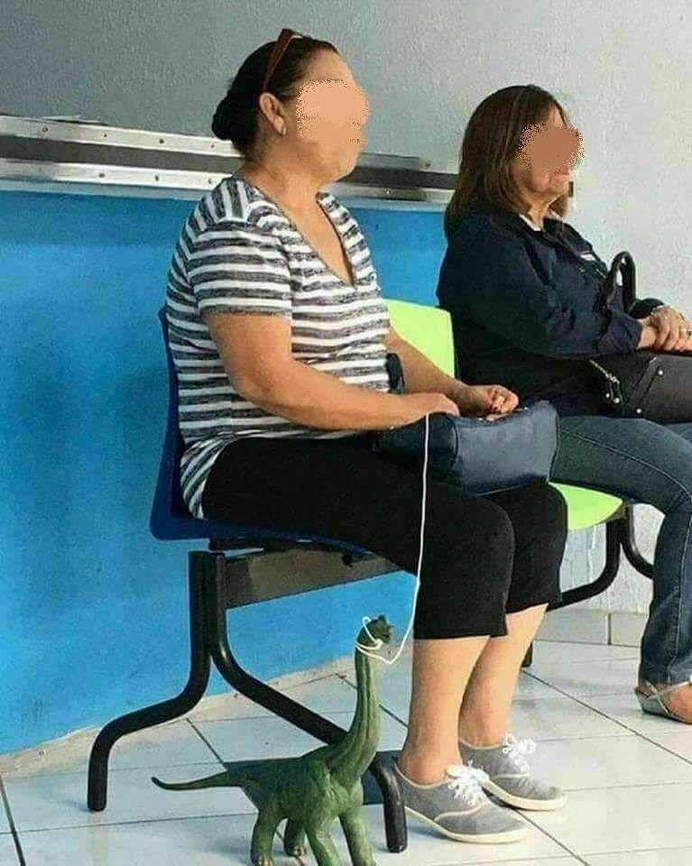 Pescara, in sala d'attesa con dinosauro: la foto diventa virale su Facebook