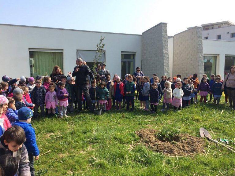 Silvi, nuovi alberi nelle scuole e nelle vie del Centro