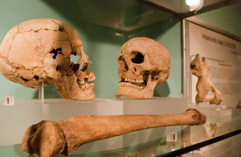 Campli, Museo Archeologico aperto fino alle 23 con concerto del Braga