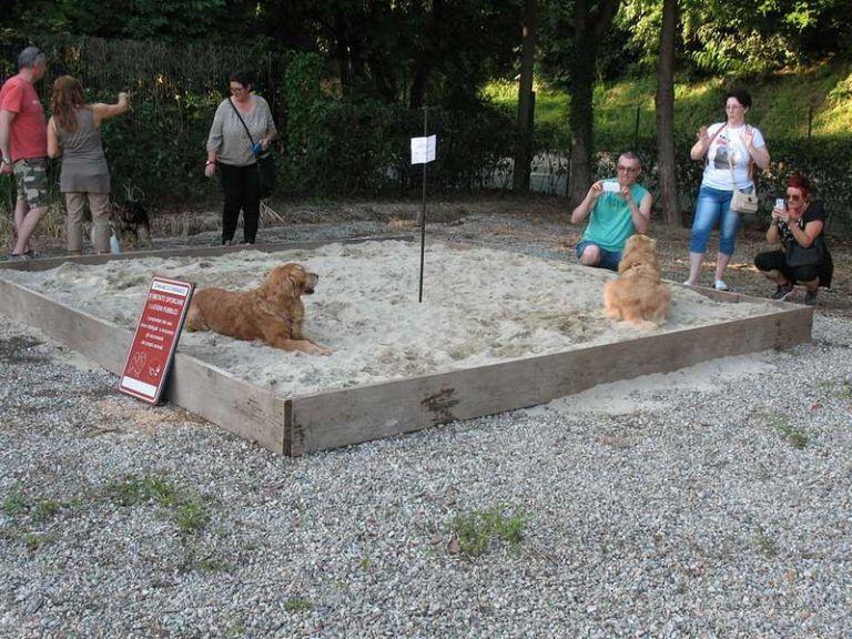 "Pescara, Forza Italia: ""Basta aree per cani nei parchi"""
