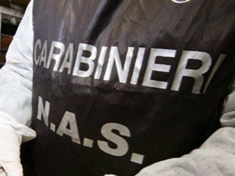 Blitz dei Nas nelle aziende vitivinicole del Teramano, sequestri e chiusure