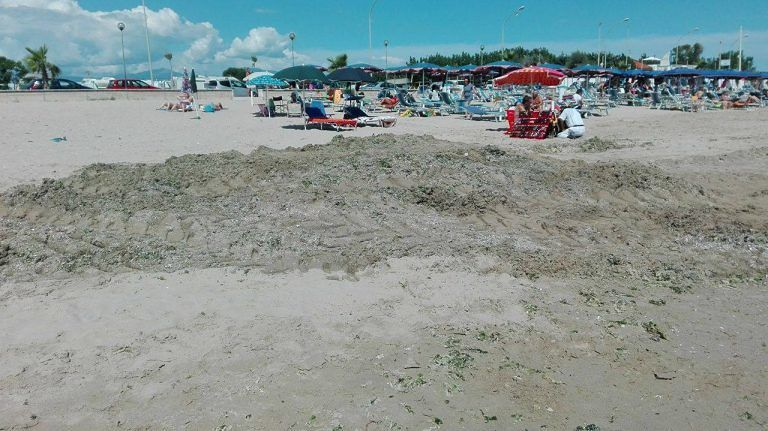 Cologna, la rabbia dei bagnanti: spiaggia libera tra cumuli di alghe e vu cumprà (FOTO)