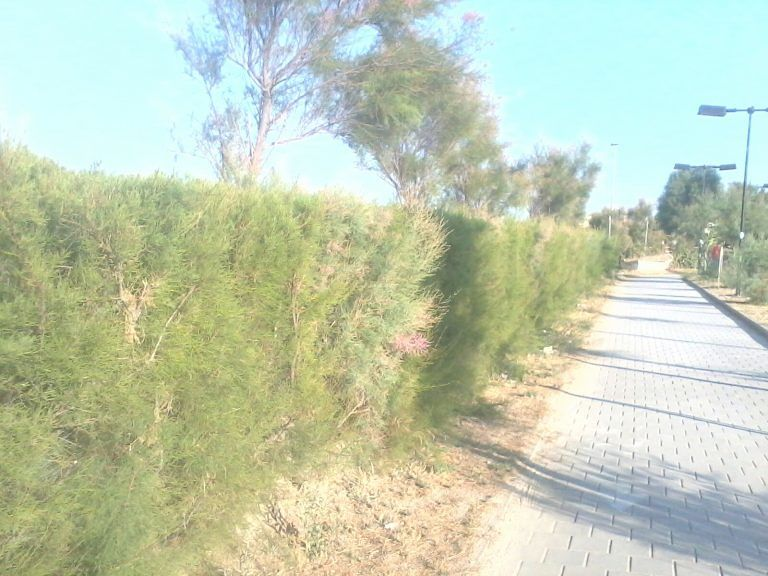 Giulianova, critiche alla spiaggia 'recintata'
