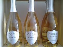 Il gusto dell'azienda vinicola Ciù Ciù da Semi di Vino –  Sant'Egidio alla Vibrata