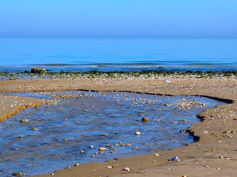 L'AMP del Cerrano aderisce alla Giornata Mondiale dell'Acqua