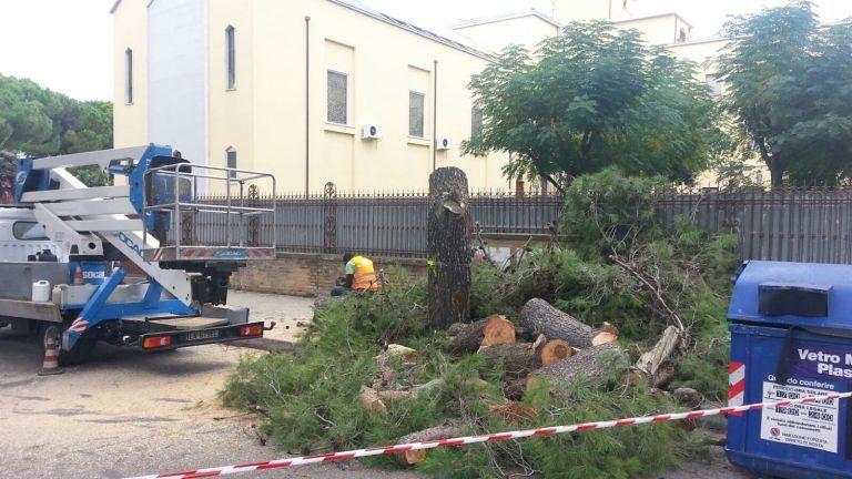 Pescara, protesta ambientalista in via Scarfoglio: interviene la polizia FOTO