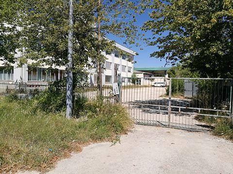 """Roseto, la scuola """"Fedele Romani"""" tra incuria e abbandono. La rabbia dei cittadini (FOTO)"""