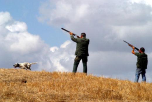 Caccia Abruzzo,  nuove procedure per il rilascio dei tesserini