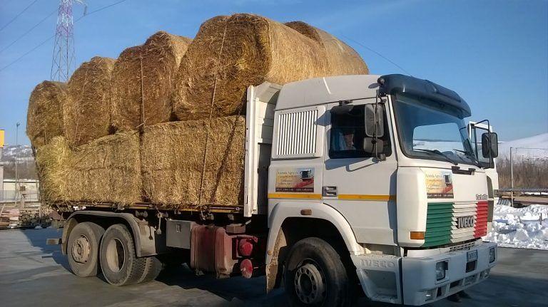 Danni alle imprese agricole, arriva fieno per l'Abruzzo