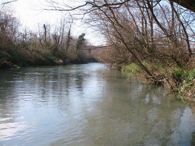 Fiume Pescara, mercurio nei pesci: si muove il Ministero dell'Ambiente