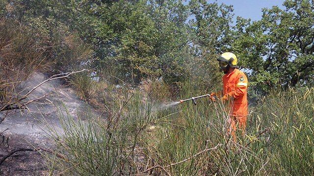 Torricella, incendio a Villa Tofo FOTO