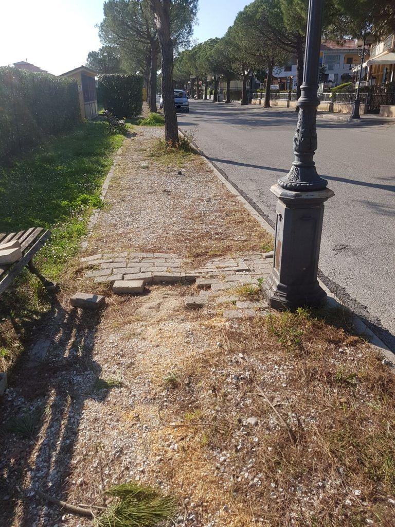 Scerne di Pineto, via Volturno nel degrado con marciapiedi rotti e radici FOTO
