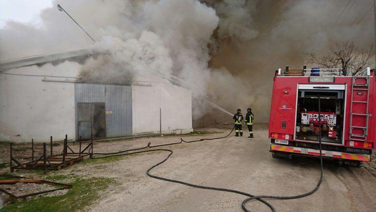 Basciano, spento l'incendio nell'allevamento FOTO