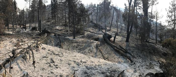 Incendio Monte Morrone, le fiamme danno tregua verso valle