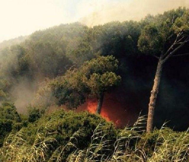 Castel di Ieri, incendio brucia 50 ettari di pineta