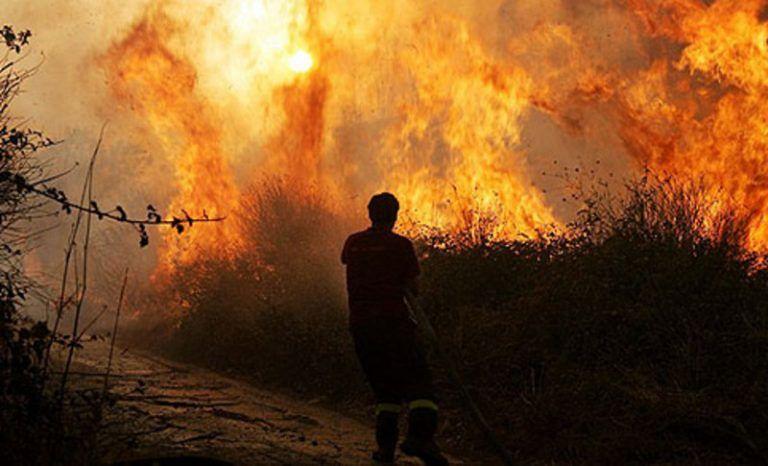 Inferno nel pescarese: campagne a fuoco da due notti