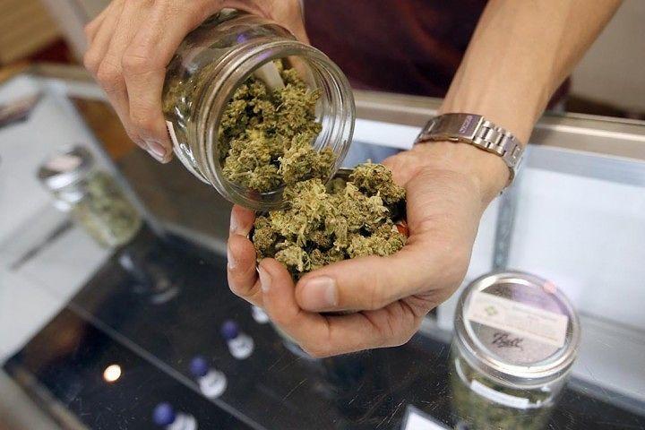 Cannabis, Acerbo e Di Nanna: 'Regione Abruzzo applichi la legge'