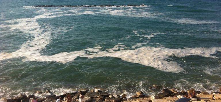 Pescara, balneazione: torna l'incubo escherichia coli