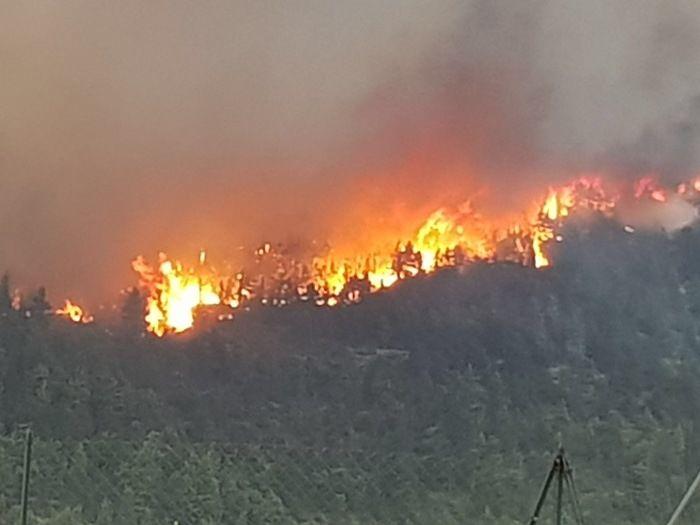 Incendi Abruzzo, 4 roghi attualmente attivi sul territorio
