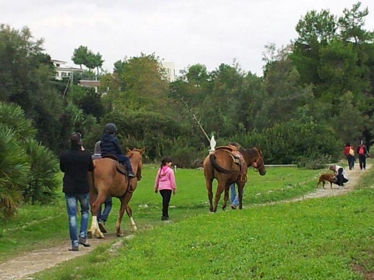Tutti a cavallo nel Parco del Cerrano
