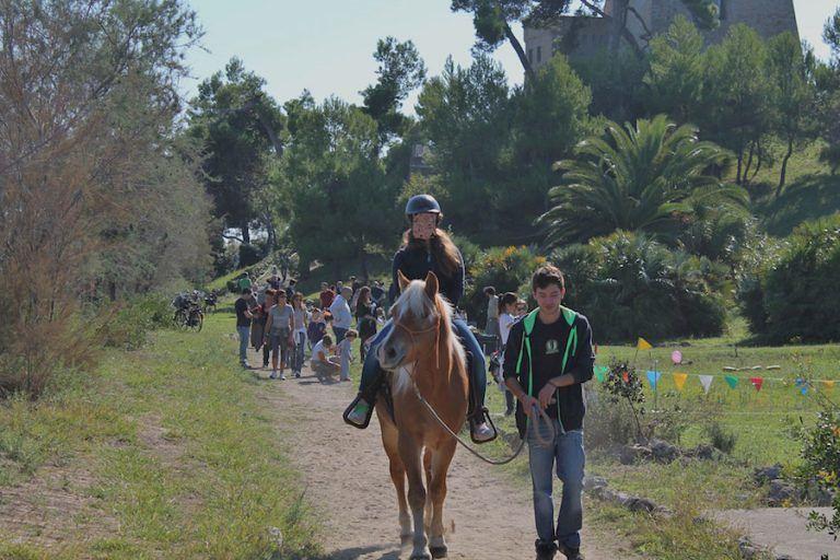 I cavalieri della Torre: open day a cavallo al Parco del Cerrano