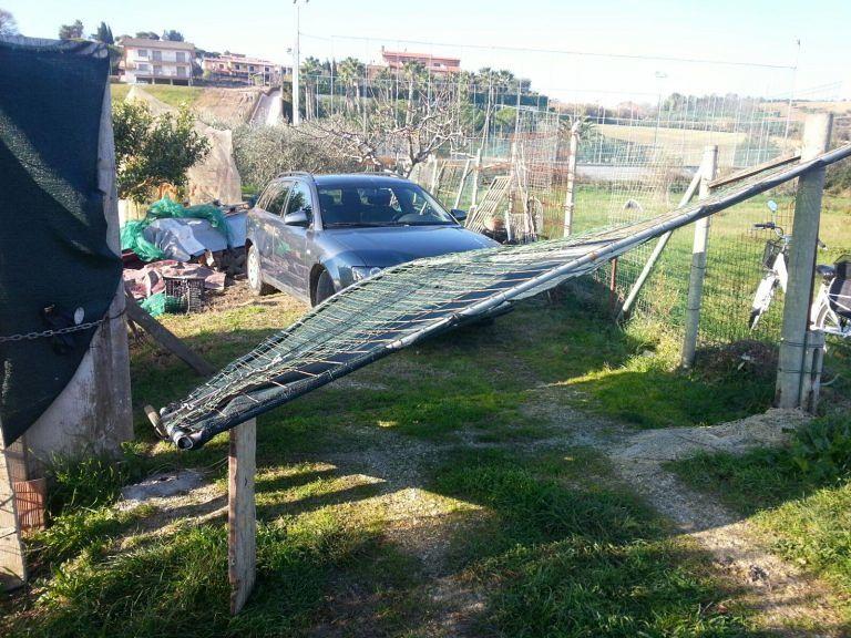 Tortoreto, auto finita nell'orto: la testimonianza