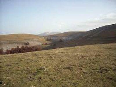 Appennino Ecosistema contro Regione: 'Vuole sfruttamento selvaggio dei pascoli abruzzesi'