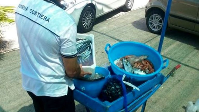 Torino di Sangro: sequestrato pesce venduto in spiaggia