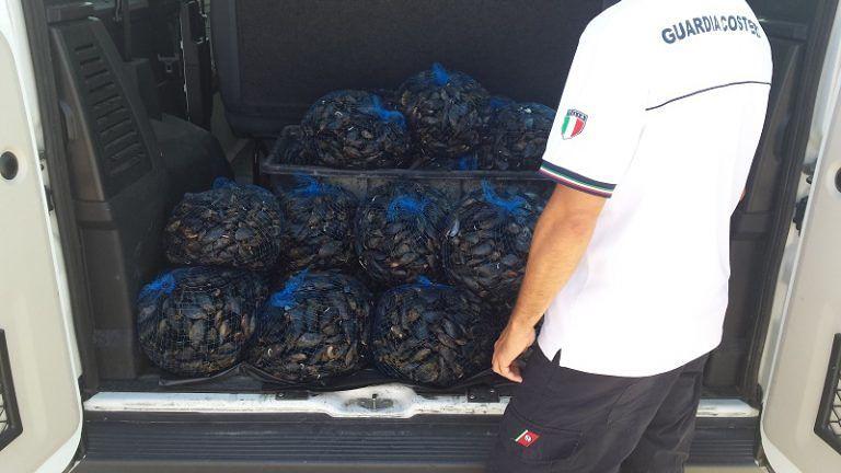 Pescara, sequestrati 3 quintali di cozze. Multati pescatori di frodo
