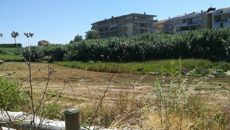 Villa Rosa, mezzi al lavoro per pulire l'argine del Vibrata
