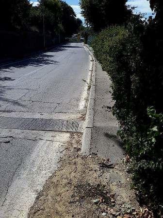 Chieti, Levante: emergenza vegetazione sul marciapiede