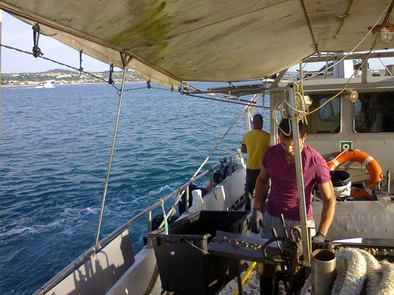 Zooprofilattico e Cogevo insieme per il monitoraggio di mare e vongole e i pescatori 'denunciano' i depuratori