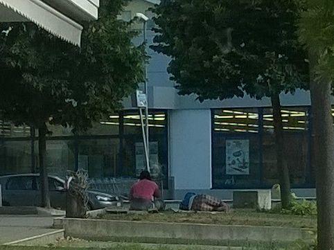Giulianova, la città vietata alle persone con il cane ma aperta agli zingari LA LETTERA