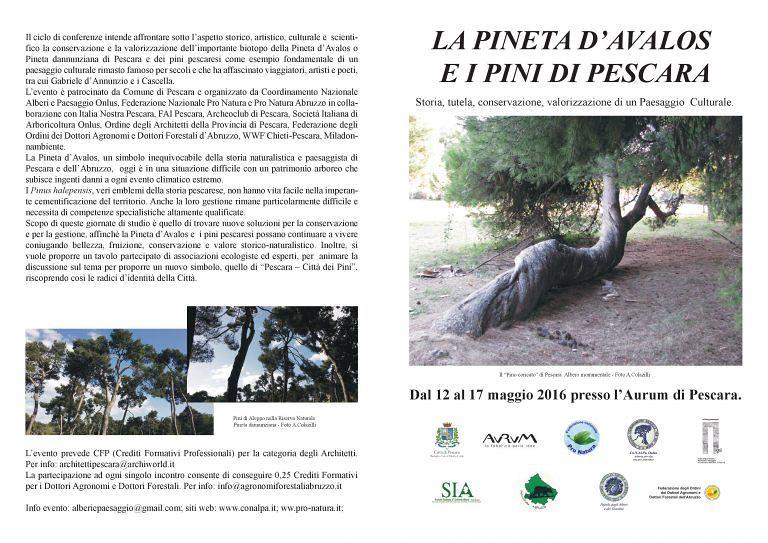 Pescara, al via la settimana dedicata al verde