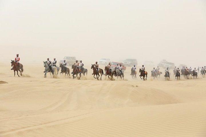 Equitazione, l'aquilano Gigante brilla alla Crown Prince Endurance Cup di Dubai