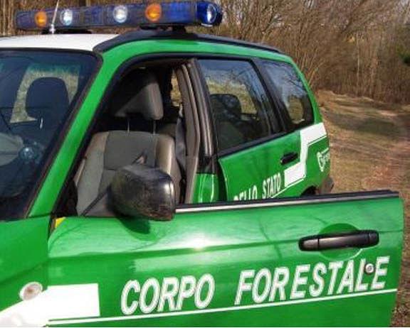 Corpo Forestale, 8 vice ispettori prendono servizio in Abruzzo