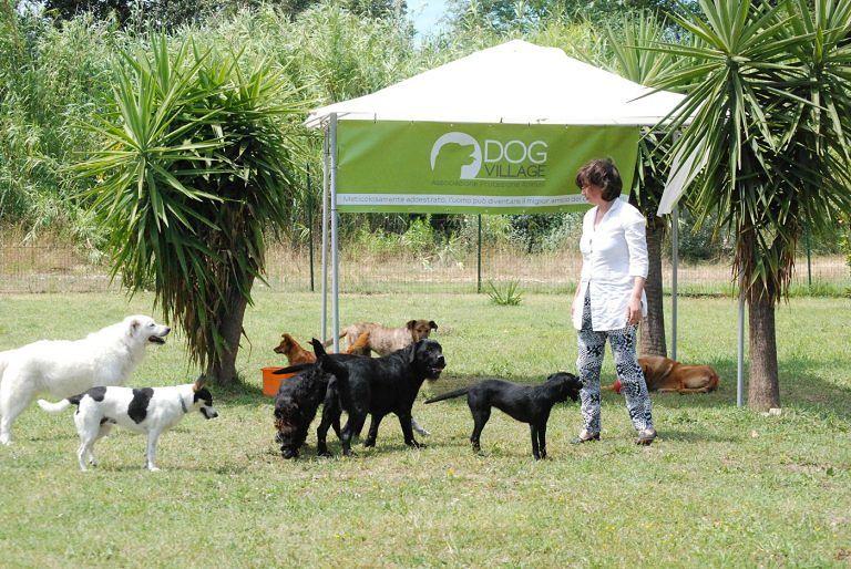 Montesilvano, convenzione tra il Comune e il Dog Village