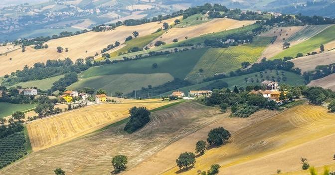 Imu terreni agricoli, Battagia (Cia) scrive al ministro: i nostri associati non pagheranno