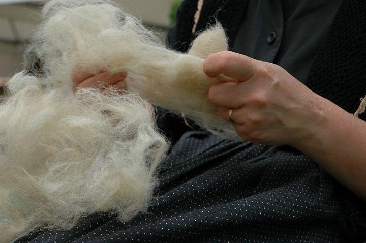 Camera Commercio emana un bando per la produzione di prodotti di lana aquilana