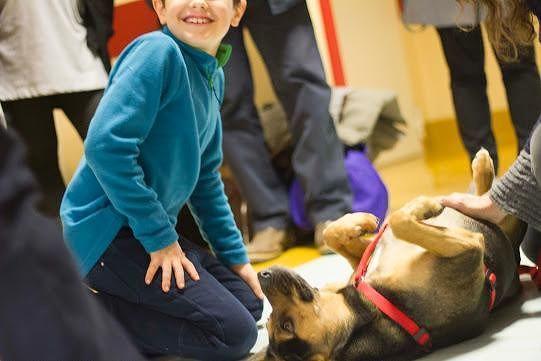 Giulianova, la fisioterapia affiancata dalla pet-therapy alla Piccola Opera