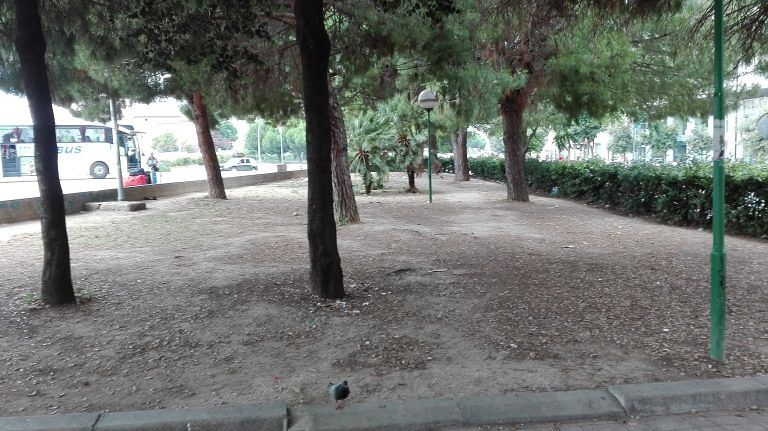 Pescara, 30 dosi di droga nascoste tra le aiuole del terminal bus
