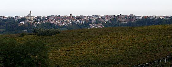 Il Consorzio Tutela Vini d'Abruzzo al fianco dei produttori nella difesa del paesaggio vitivinicolo tollese