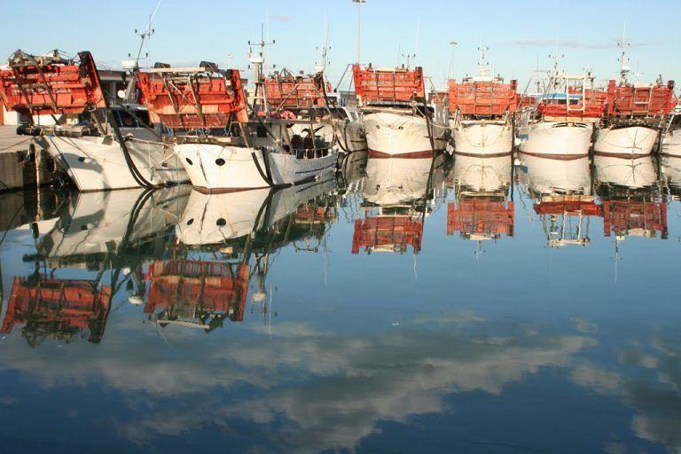 Giulianova, le vongolare del Cogevo tornano in mare