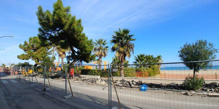 Roseto, alberi tagliati per la pista ciclabile: scatta la protesta FOTO
