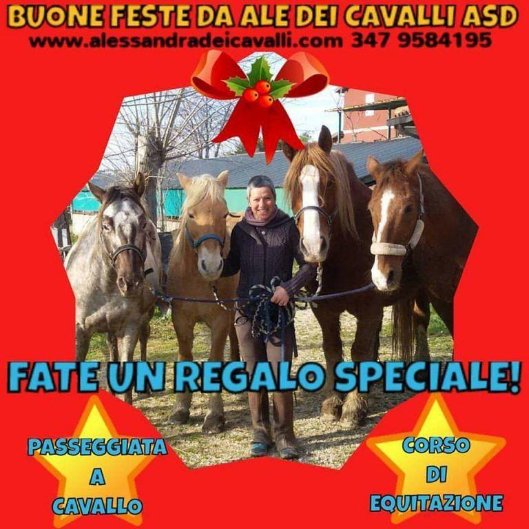 Ale dei cavalli: A Natale regalate passeggiate a cavallo|Mosciano S.Angelo