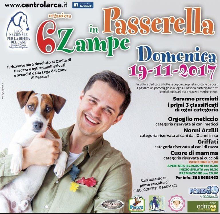Pescara, raccolta fondi per il canile: torna '6 zampe in passerella'