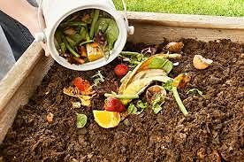 Alba Adriatica, compostaggio domestico: ok al regolamento. Servizio da gennaio