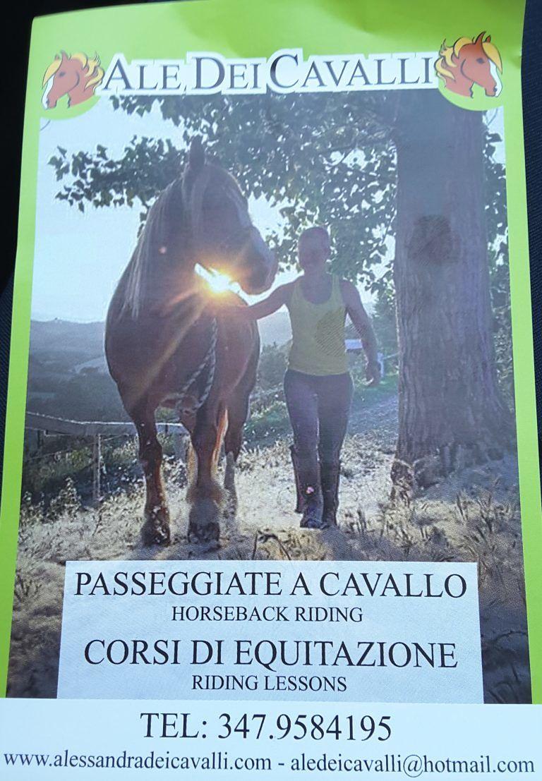 Ale dei cavalli: corsi di equitazione e passeggiate immersi nel verde della natura| Mosciano S.Angelo