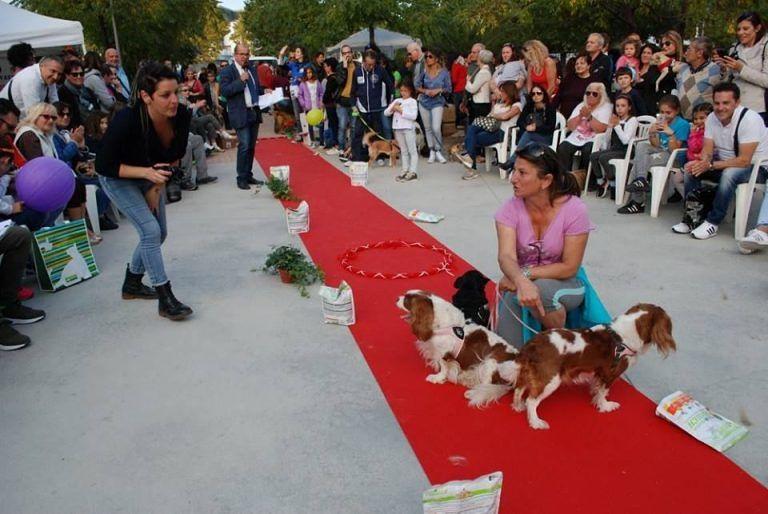 Montesilvano, boom di presenze alla Festa degli animali
